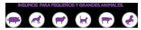 Insumos para pequeños y gandes animales
